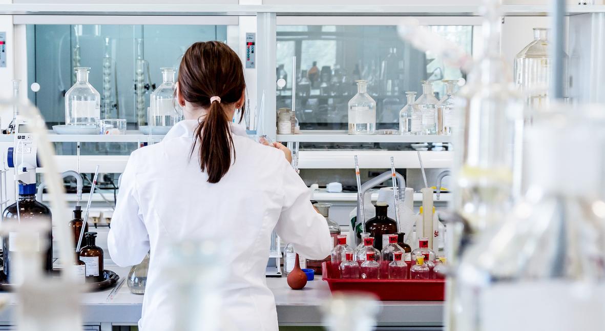 Salt: главное здесь, остальное по вкусу - Будущее трансплантологии: испанские ученые создали химеру человека и обезьяны
