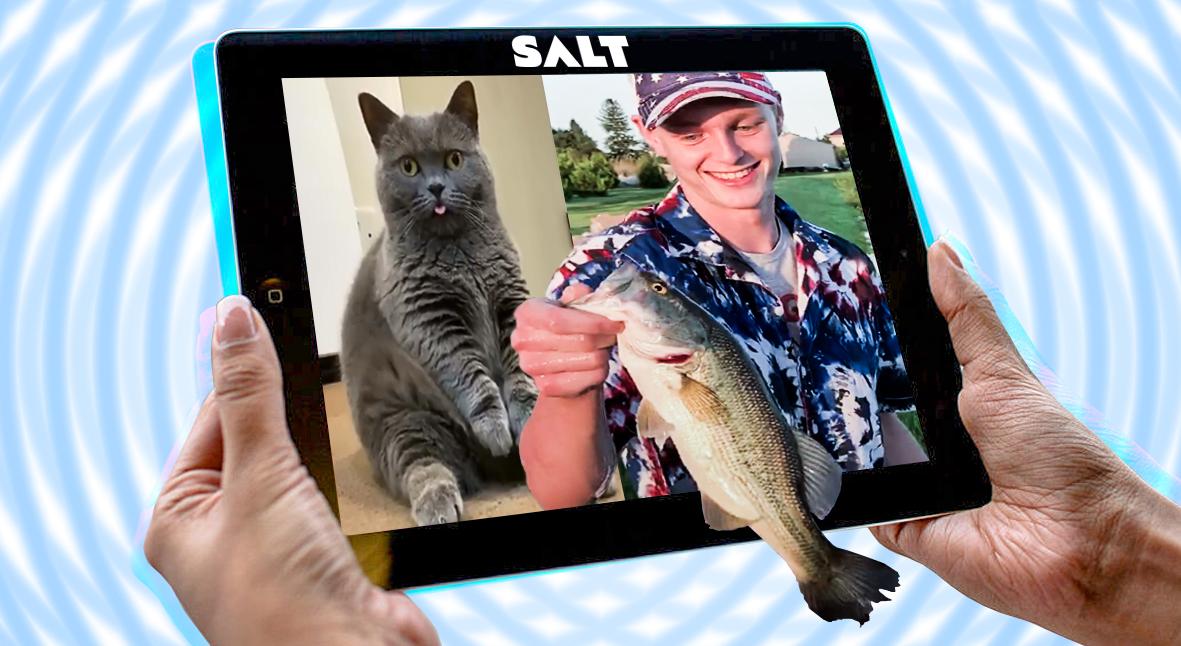 Salt: главное здесь, остальное по вкусу - Сиди и смотри: 10 лучших видео прошлой недели