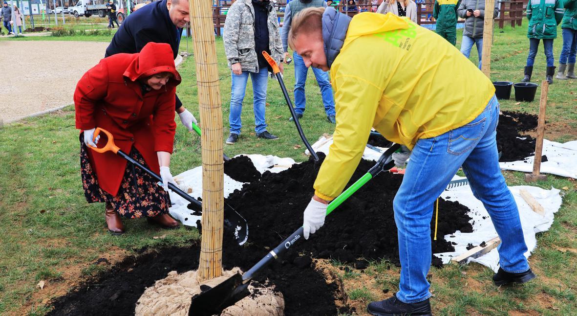 Salt: главное здесь, остальное по вкусу - «Наше дерево»: Ирина Дубцова, Стас Пьеха и другие звезды поддержали акцию по высадке деревьев в Москве