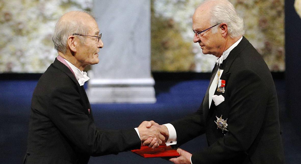 Salt: главное здесь, остальное по вкусу - В Стокгольме состоялась торжественная церемония вручения Нобелевских премий