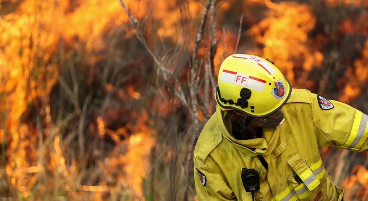 Salt: главное здесь, остальное по вкусу - Пинк, Николь Кидман и другие звезды пожертвовали крупные суммы на тушение пожаров в Австралии