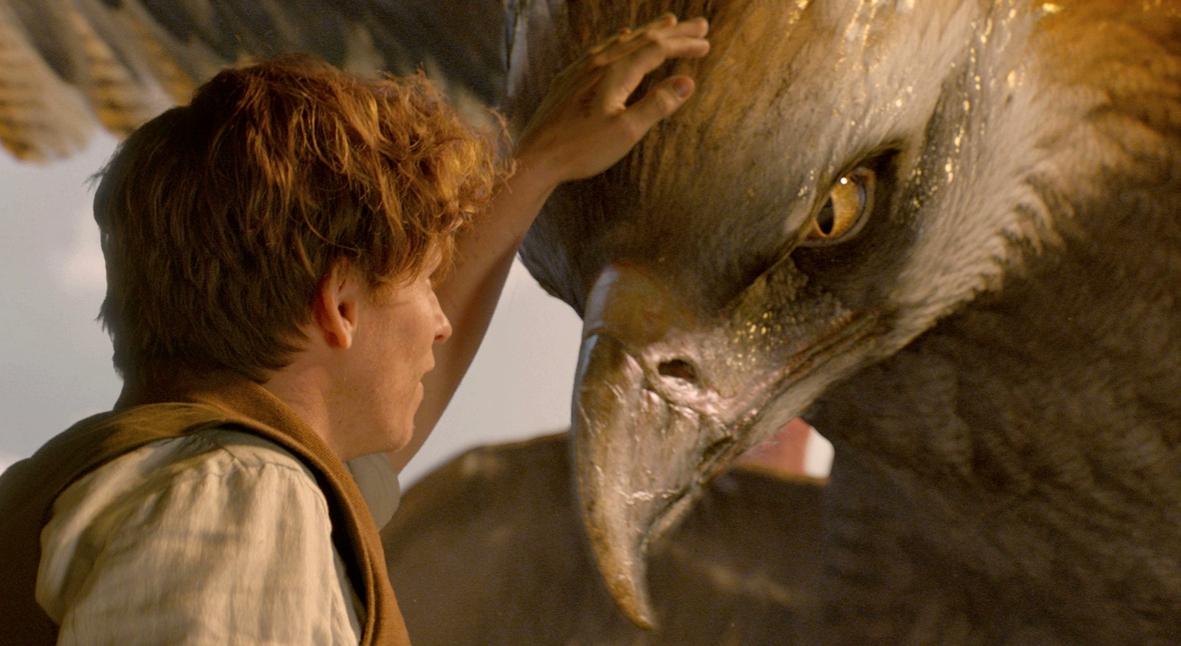 Salt: главное здесь, остальное по вкусу - На BBC выйдет фильм о прототипах «Фантастических тварей»