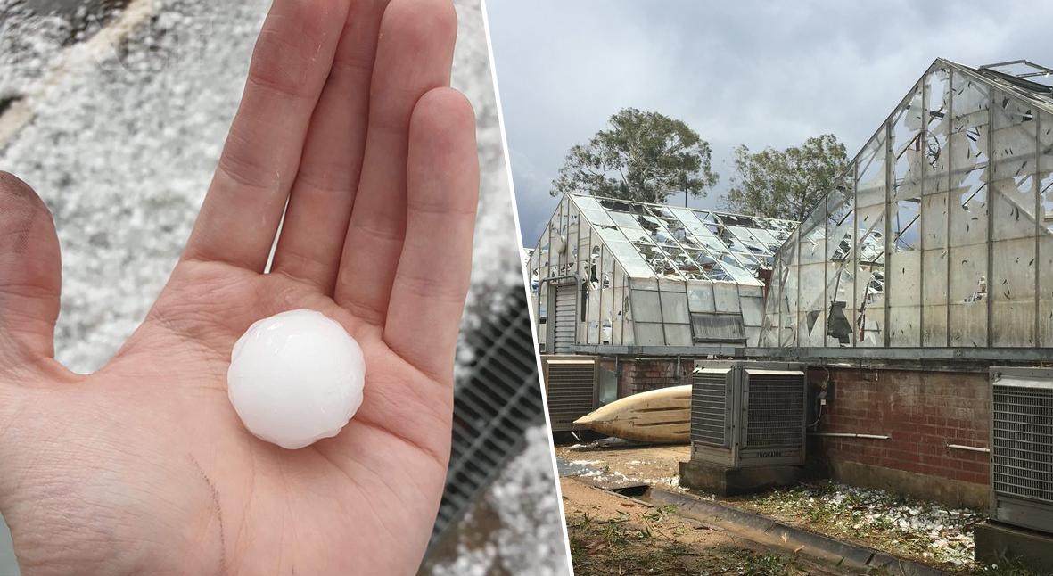 Salt: главное здесь, остальное по вкусу - После пожаров и песчаной бури на юго-восток Австралии обрушился крупный град