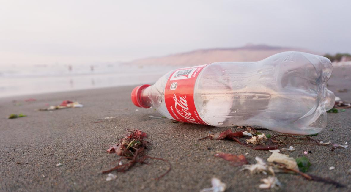 Salt: главное здесь, остальное по вкусу - Coca-Cola не откажется от одноразовых пластиковых бутылок из-за спроса