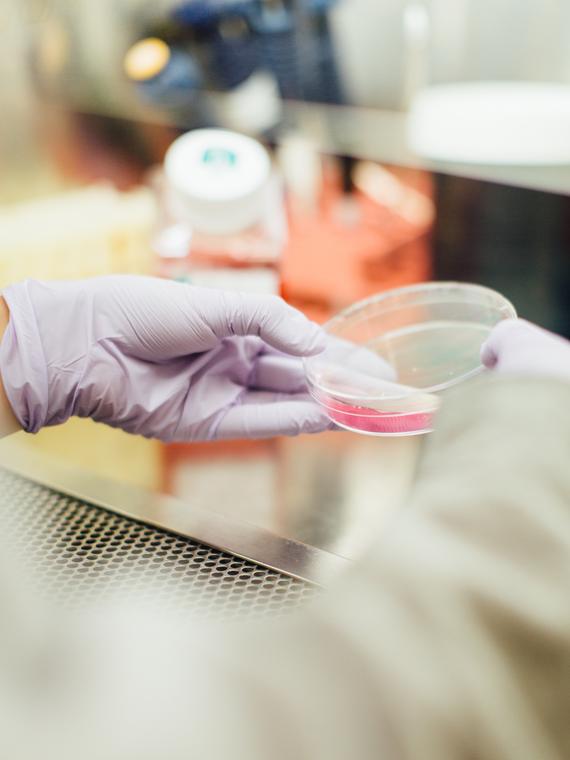 Salt: главное здесь, остальное по вкусу - Число жертв коронавируса в Китае превысило число погибших от SARS