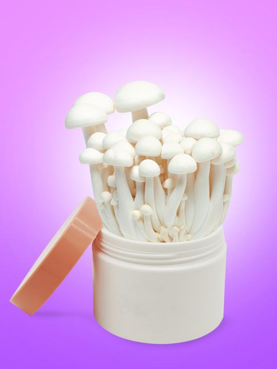 Salt: главное здесь, остальное по вкусу - Шампиньоны, вешенки, чага: как грибы попали в косметику и в чем их польза