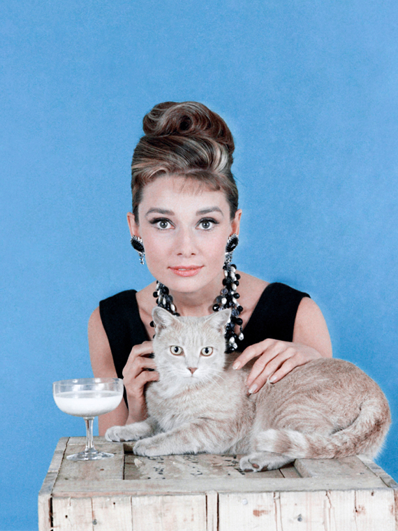 Salt: главное здесь, остальное по вкусу - «Не понимаю, почему люди считают меня красивой»: мифы и факты о жизни легендарной Одри Хепбёрн