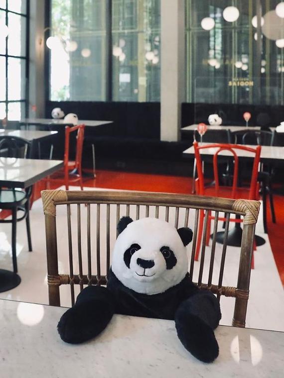 Salt: главное здесь, остальное по вкусу - За столы ресторана в Таиланде посадили плюшевых панд — так посетители находятся друг от друга на безопасном расстоянии