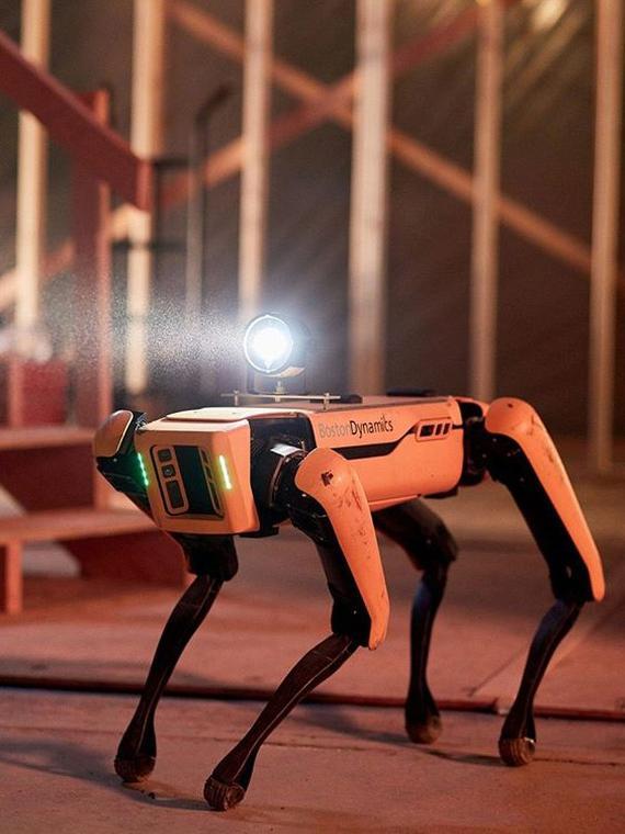 Salt: главное здесь, остальное по вкусу - Роботы-собаки Boston Dynamics поступили в свободную продажу