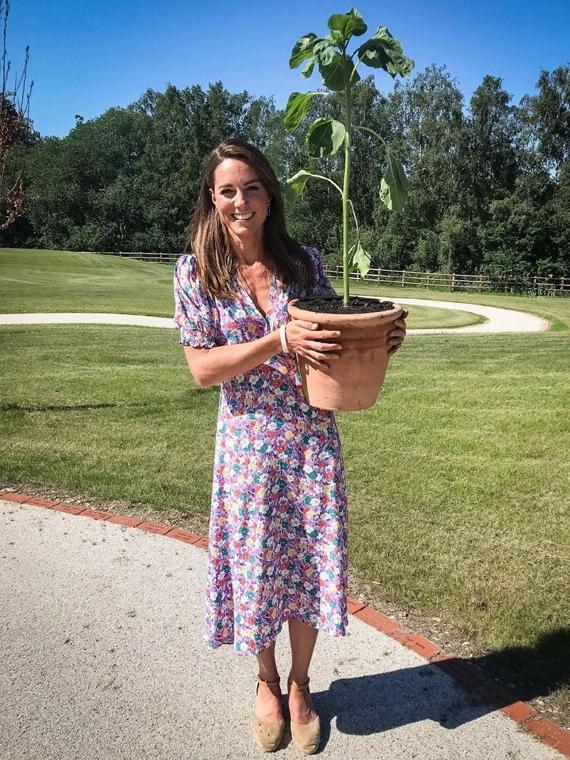 Salt: главное здесь, остальное по вкусу - Кейт Миддлтон посадила растения для сада детского хосписа