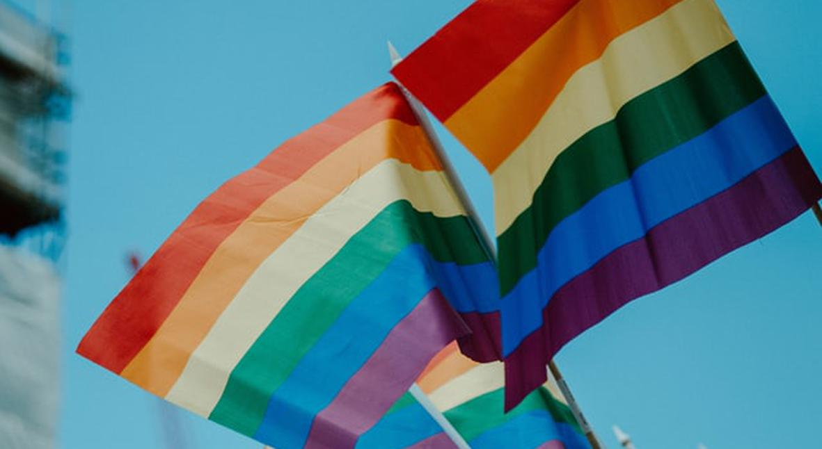 Salt: главное здесь, остальное по вкусу - В Черногории легализовали однополые браки