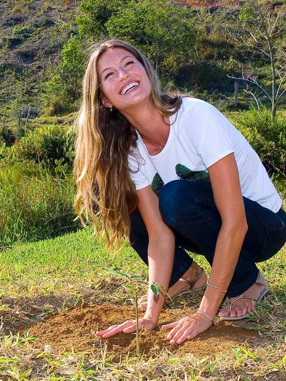 Salt: главное здесь, остальное по вкусу - Жизель Бундхен посадит 40 000 деревьев в честь своего 40-летия